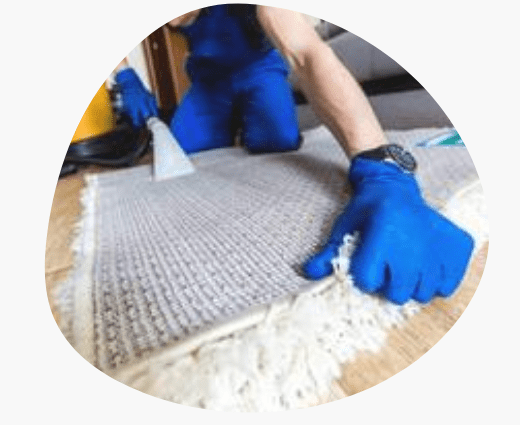 Rug Cleaning In Northcote