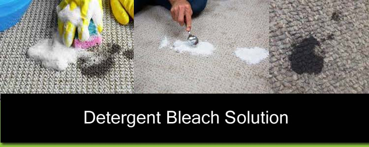 Detergent-Bleach Solution